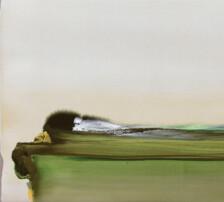 Shima / De musgos y arenas